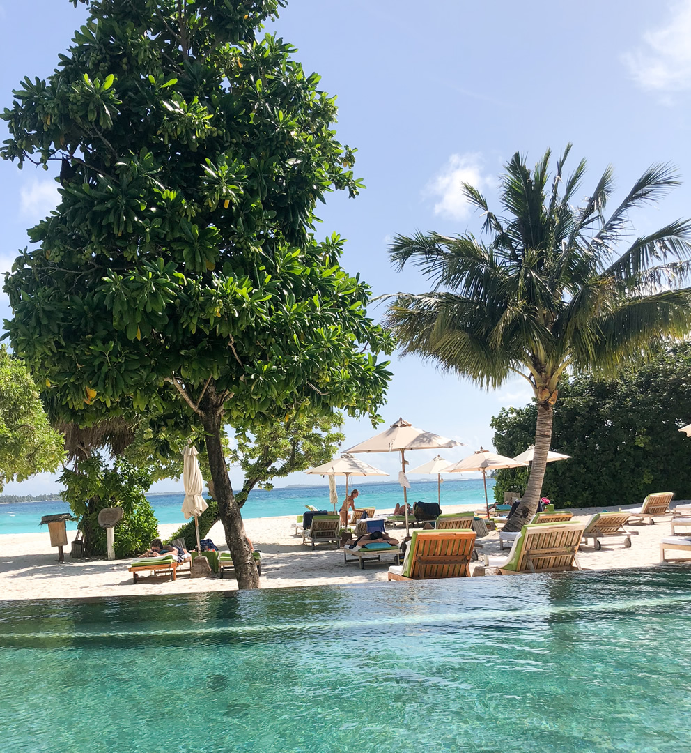 Maldives Honymoon Packages
